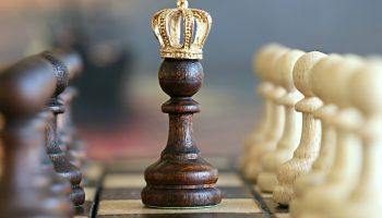 Dividende la meilleure stratégie pour rentabiliser sur le long terme