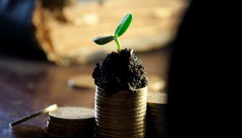 Pourquoi les entreprises paient des dividendes
